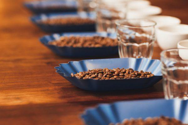 Espresso Italiano Tasting, Corso di Assaggiatore di Caffè