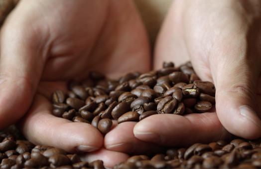 Iiac Partner e Iiac Academy: la crescita degli assaggiatori di caffè